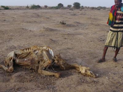 Kinder besonders betroffen vom Klimawandel